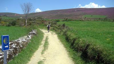 Auf dem Jakobsweg in Galizien, Spanien, hoch zu O'Cebreiro