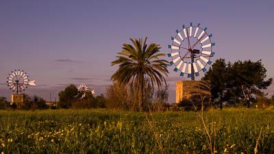 Die Windmühlen von Mallorca sind im Inselinnern zu finden.