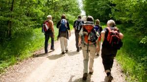Pilger zwischen Rothenburg und Rottenburg
