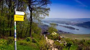 Auf dem  Rheinsteig beim Niederwalddenkmal